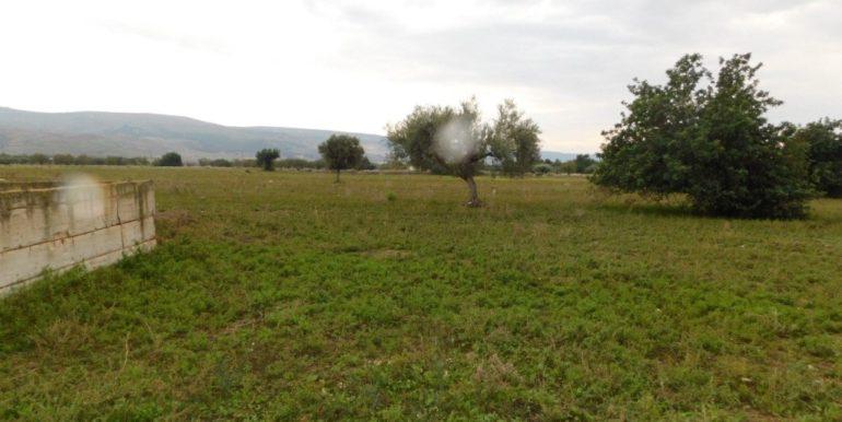 terreno_agricolo-in-vendita-a-chiaramonte_gulfi (10)