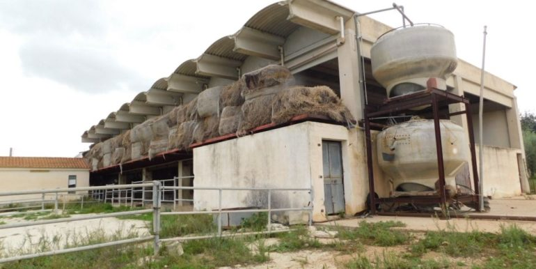 terreno_agricolo-in-vendita-a-chiaramonte_gulfi (11)