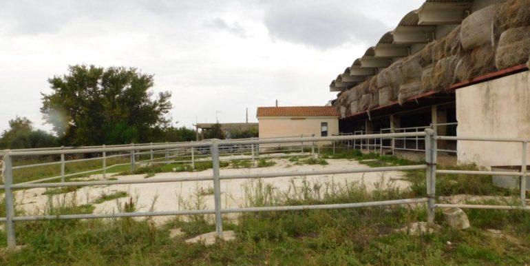 terreno_agricolo-in-vendita-a-chiaramonte_gulfi (12)