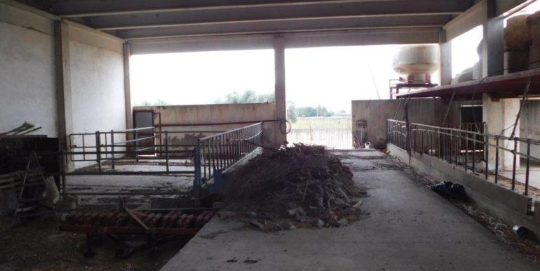 terreno_agricolo-in-vendita-a-chiaramonte_gulfi (20)