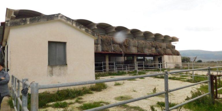 terreno_agricolo-in-vendita-a-chiaramonte_gulfi (9)